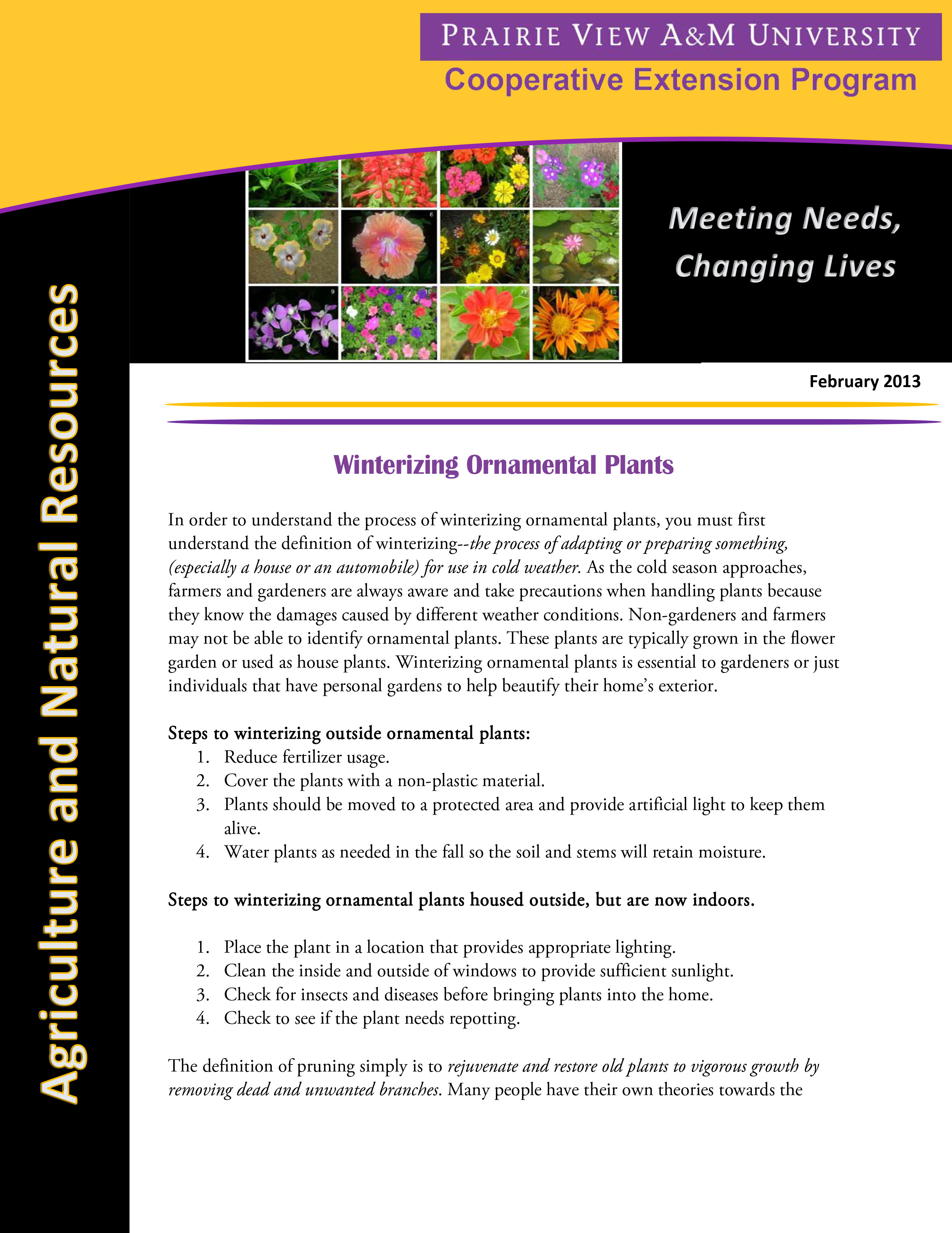 Winterizing Ornamental Plants
