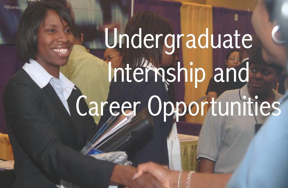 Job Postings for COB Undergraduate Students