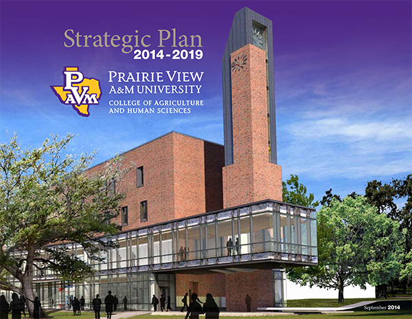 CAHS Strategic Plan e-pub cover